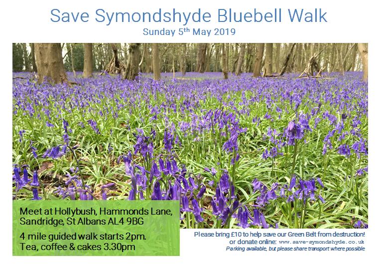 Symondshyde Bluebell Walk - thumbnail